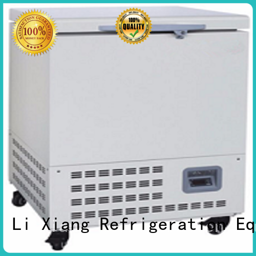 Li Xiang Auto mini ice chest freezer on sale for seafoods.